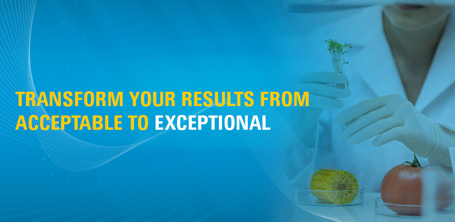 Transform your results from acceptable to exceptional