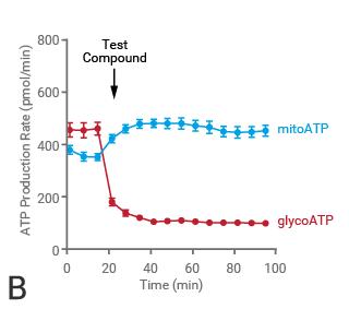 ATP Agilent figure 3