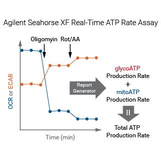 ATP Agilent figure 6