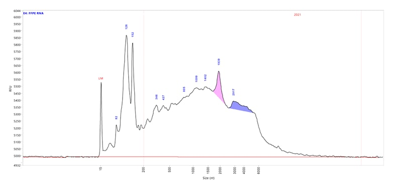 FFPE HS RNA sample on the Fragment Analyzer