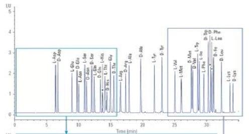 标样衍生分离色谱图