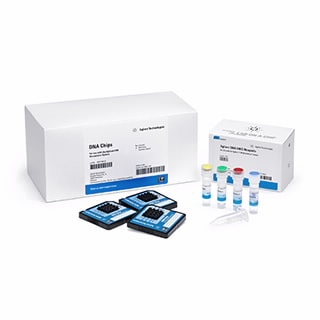 Bioanalyzer DNA Analysis