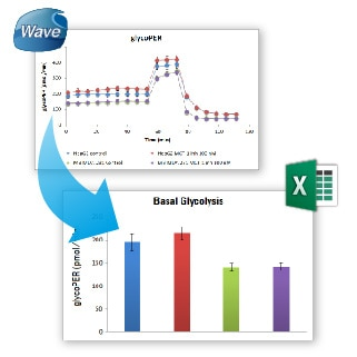 Seahorse XF Glycolytic Rate Assay Report Generators